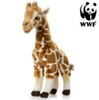 Giraff - WWF (Världsnaturfonden)